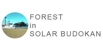 FOREST in SOLAR BUDOKAN 2016