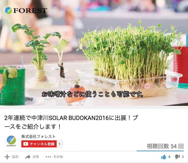 フォレストチャンネル紹介_001